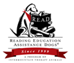 reading-education